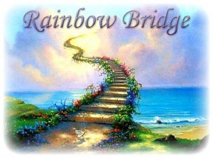 Rainbow-Bridge-3